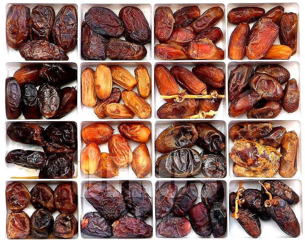 Pictures Of Different Date Fruit